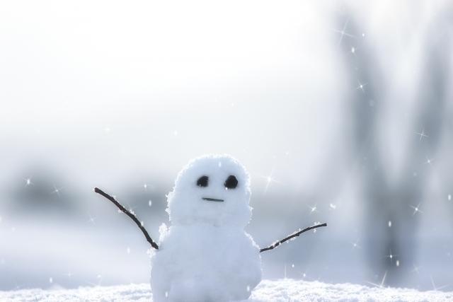 雪の雑学|みぞれやあられの違い...